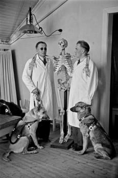 Gallows humour: blind men learning to be masseurs. Photo: Väinö Kannisto, 1950