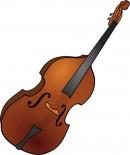 Double bass. Wikimedia